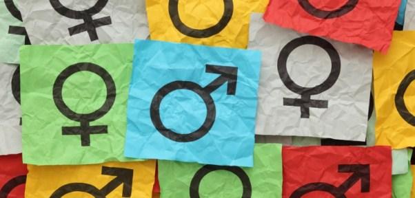 genero-trans-mulheres-lgbt2-786x376