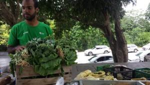 feira organica_Paseo